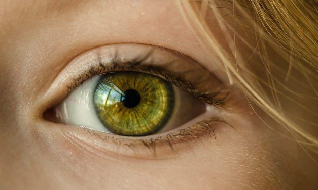 SGEM#245: Flash-errrs (POCUS for Retinal Detachments)