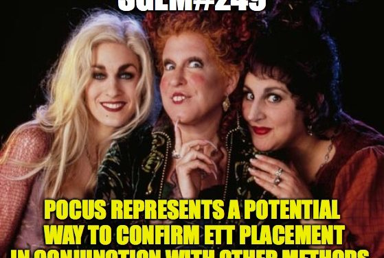 SGEM Memes #249