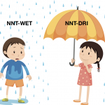 SGEM Xtra: NNT – WET or DRI