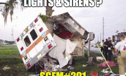 SGEM Memes #291