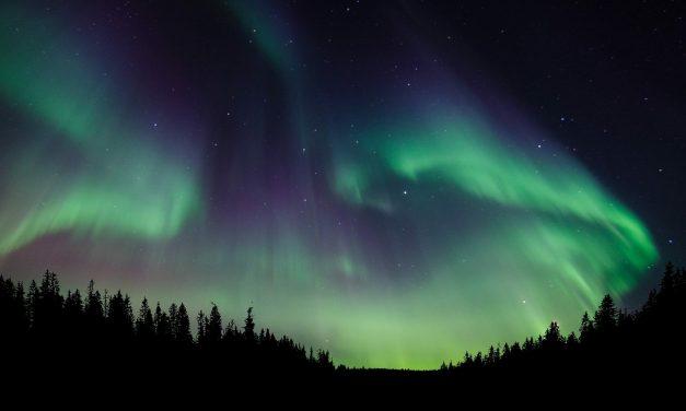 SGEM Xtra: Presenting in a Northern Constellation
