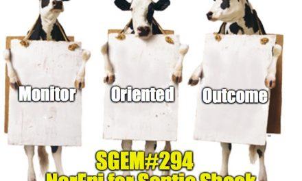 SGEM Memes #294
