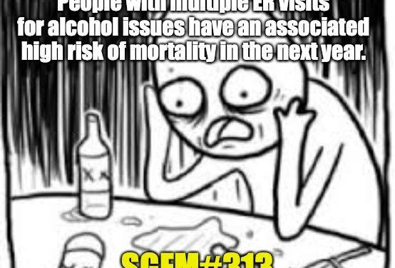 SGEM Memes #313